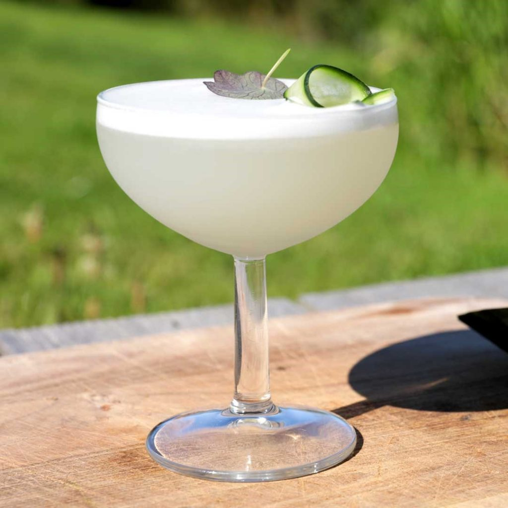 How to make the perfect Gin Sour cocktail